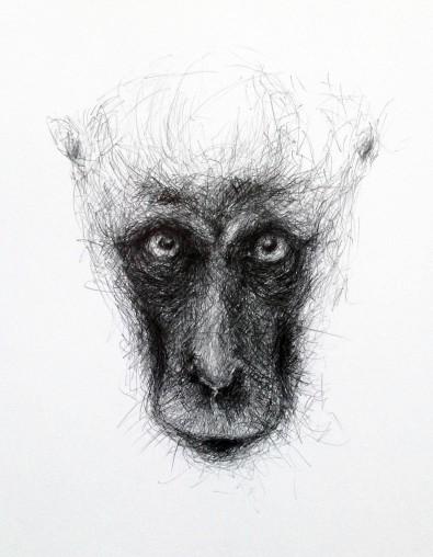 """""""Abe"""" – 2015 - blyant på papir - 50 x 40 cm - Tegning af Pernille Helleskov Pedersen"""